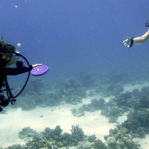 Underwater Frisbee Fun